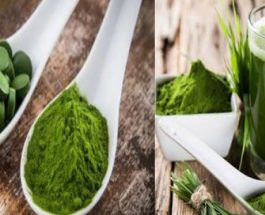 Ky pluhur ka më shumë hekur se spinaqi, më shumë antioksidantë se boronica, dhe më shumë vitamin A se karrota! (Duhet ta provosh)