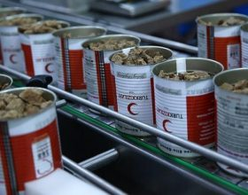 Organizatat turke do të shpërndajnë mish kurbani për 25 milionë njerëz në botë