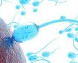 Trajtimet natyrale të sterilitetit