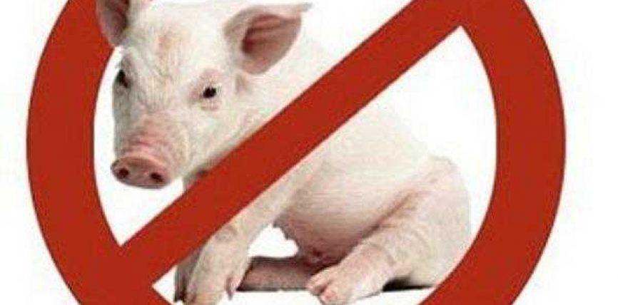 Analize shkencore mbi dëmet e mishit të derrit !?