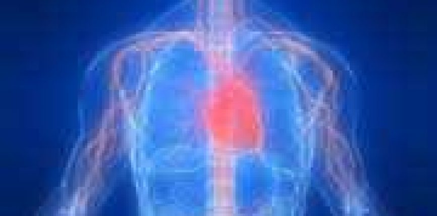 Ndikimi i stresit në shëndetin e njeriut