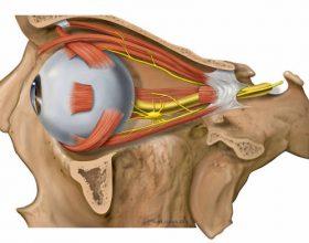 Çka është dridhjea e pavullnetshme e syrit