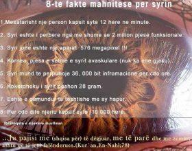 8 fakte mahnitese per syrin