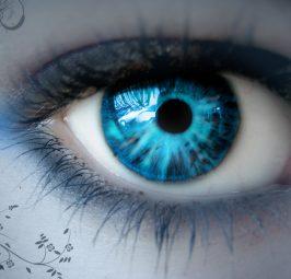 3 ushqimet që ju shërojnë sytë