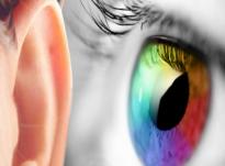 Pse Kur'ani e përmend dëgjimin para shikimit? Ja zbulimi fenomenal shkencor!