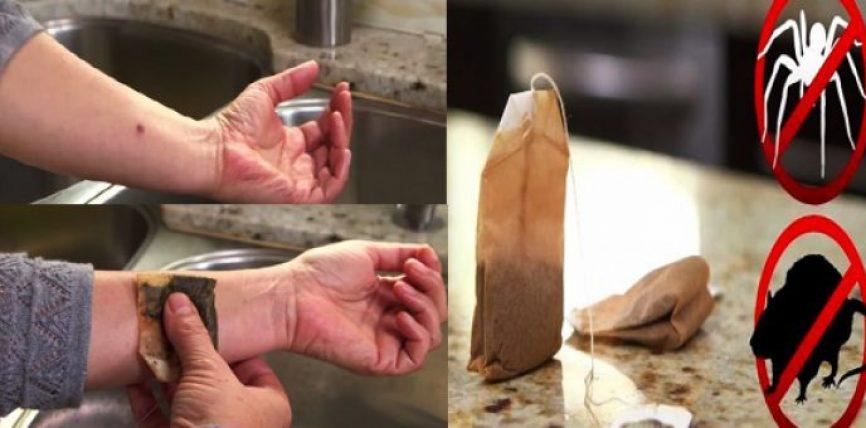 Pastron enët, freskon shtëpinë tuaj dhe shumë më tepër: Produkti që kushton pak dhe bën shumë punë