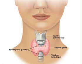 Ilaç natyral shtëpiak për gjëndrrën tiroide; do të dëshironi ta ndani me të gjithë!