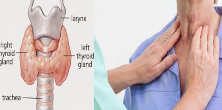 Problemet shëndetësore që vijnë nga mosfunksionimi i tiroides, këto janë organet që preken