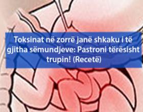 Toksinat në zorrë janë shkaku i të gjitha sëmundjeve: Pastroni tërësisht trupin! (Recetë)
