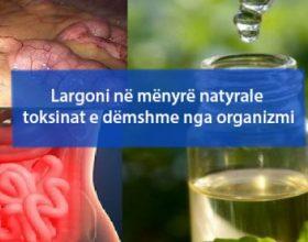 Largoni në mënyrë natyrale toksinat e dëmshme nga organizmi