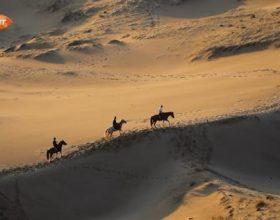 Studim – ADN-ja tregon se Saharaja ka qenë e gjelbëruar dhe e populluar