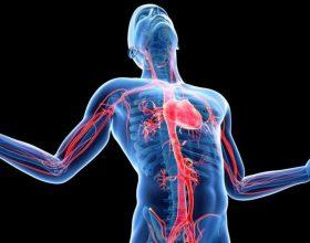10 ndryshime në mënyrën e jetesës që ndikojnë në shëndetin tuaj