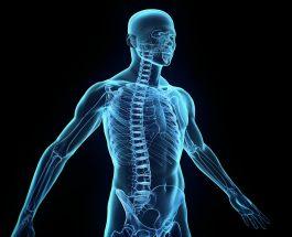 Kuriozitet rreth semundjeve dhe trupit te njeriut ,interesante
