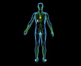 Katër gjëra e shkatërrojnë trupin, deri në vdekje: