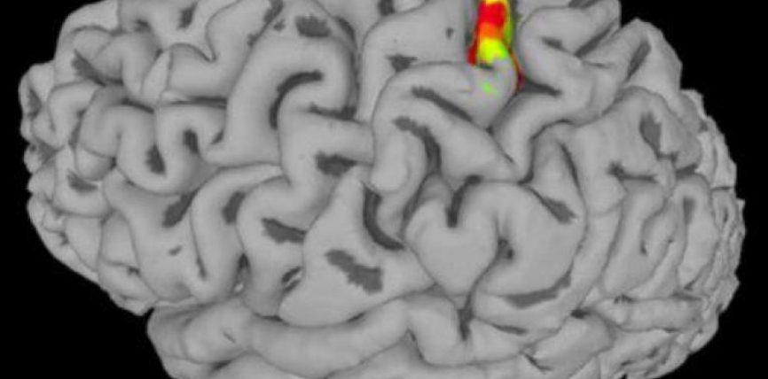 SHBA, elektrodat në tru i rikthejnë shqisën e të prekurit një pacienti të paralizuar