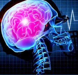 Trup i shëndoshë për mendje të shëndoshë