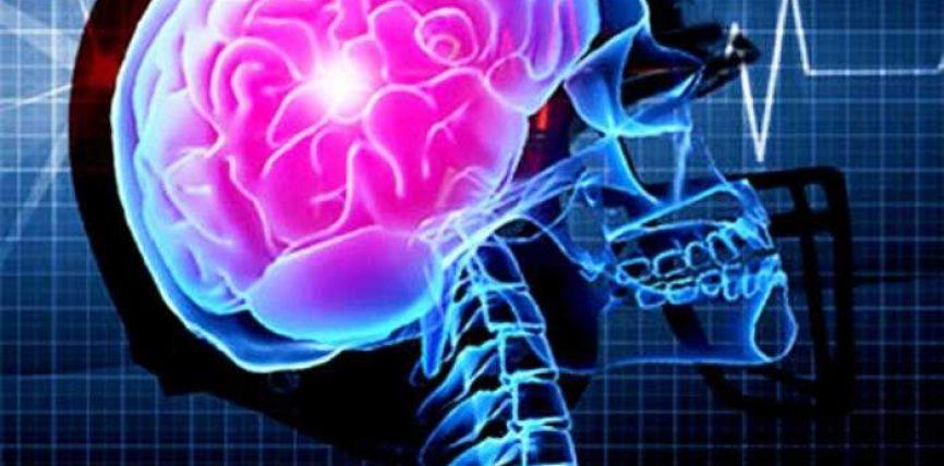 Kurani për pjesën mendore të trurit