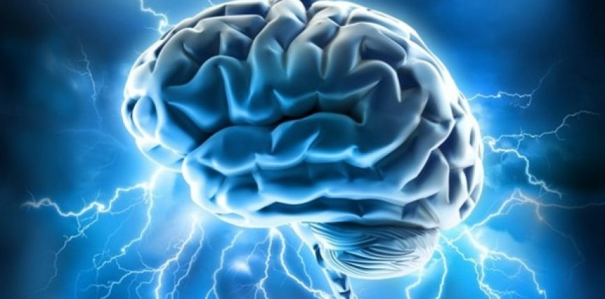 Katër gjëra forcojnë mendjen dhe intelektin: