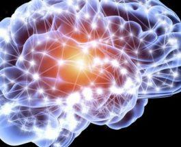 Kapaciteti i trurit njerezor eshte 10 here me i madh se cmendohej me pare