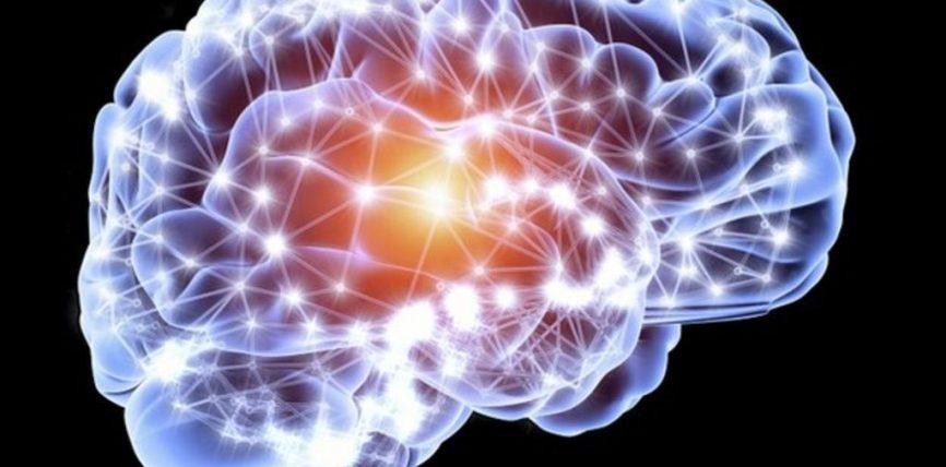 Fakte interesante për trurin!