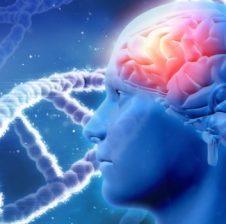 Ndikimi mahnitës i agjerimit në trurin e njeriut! Agjerimi parandalon depresionin!