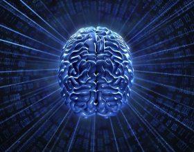 Verbërimi i mendjes