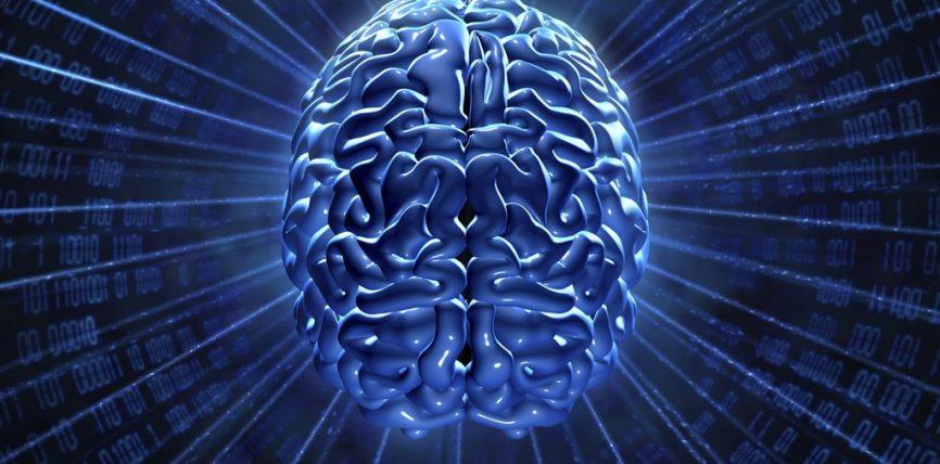 Zona e trurit që kontrollon lëvizjet