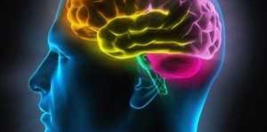 Mungesa e vitaminës B12 dëmton funksionin e trurit