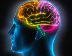 President Obama shpall nismën për eksplorimin e trurit