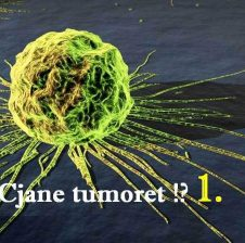 Cka jane tumoret,kanceri dhe karcinoma?