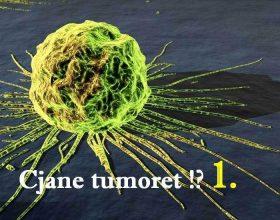 Menuja ideale për të parandaluar tumoret