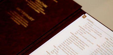 Gjuha shqipe dhe boshnjake vendosen në programin arsimor në Turqi