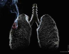 Demet e mushkrive nga tymi i cigares