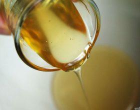 Te mirat shendetsore te mjaltes ne sherimin e plageve