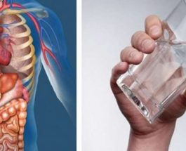 Kjo është ajo që ndodh me trupin tuaj nëse pini vetëm ujë për 30 ditë