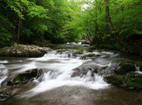 Uji më i mire është uji Zemzem