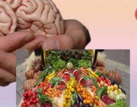 Ky është ushqimi që ju rinon trurin, të paktën me 10 vite, konsumojeni sa më shpesh