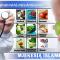 Të ushqyerit mes Islamit dhe mjekësisë