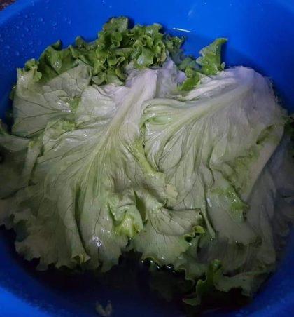 A e dini se bimët jeshile që konsumojmë çdo ditë janë plot me kimikate?!