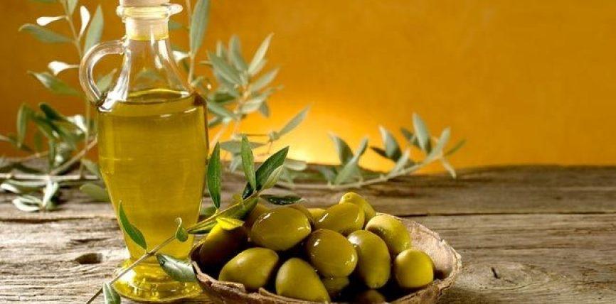 Efekti i vajit të ullirit në trupin esëll