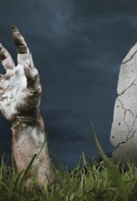 """Del nga """"varri"""" pas gjashtë vitesh"""