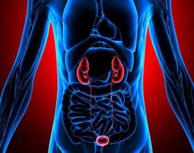 Zbuloni me kohë sëmundjet e veshkave (Shenjat dhe simptomat)