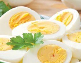 A jane vezet te mira apo te keqija per yndyren ne gjake -kolesterolin ?