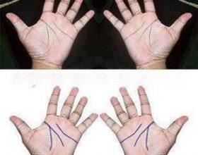Fshehtësia e vijave të dorës