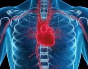 Rukje u fuqishme per problemet e zemres (siher dhe xhinet)