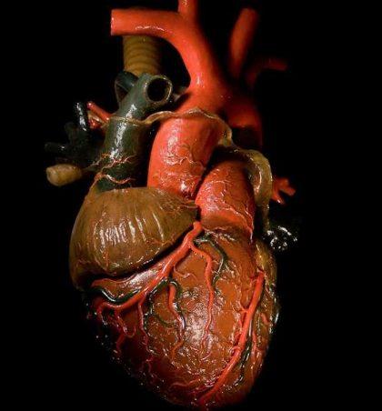 Ti vuan nga zemra