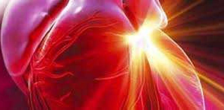 Udhëzimi i Profetit për trajtimin e sëmundjeve të zemrës