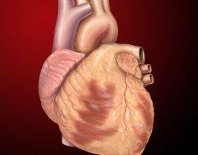 7 hurma medinase per vuajtje nga zemra