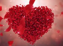 Çelësi i ilaçit (shërimit) për zemrën!