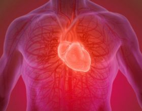 Organet e trupit tone kane nevoje te 'clirohen' nga helmet qe ne j'u ofrojme cdo dite